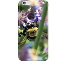 Michigan City, IN: Bumble Bee on Purple Flowers iPhone Case/Skin