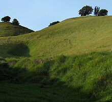 Mount Tamalpais Composition #1 by luvdusty