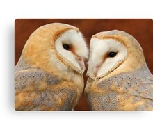 A pair of cuties Canvas Print