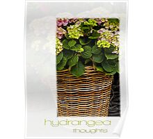 Hydrangea Thoughts  Poster
