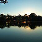 Reflections Of Evening by WildestArt