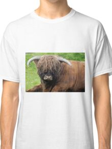 A Bad Hair Day Classic T-Shirt