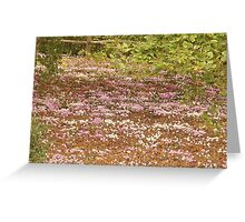 pastel coloured carpet Greeting Card