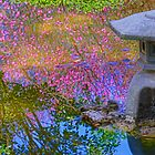 Japanese Garden by imagesbyjd