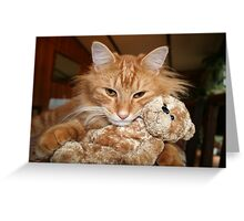Orange Tabby Cat with His Stuffed Buddy Greeting Card
