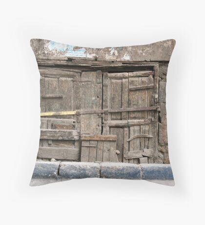 A Hidden Portal Throw Pillow