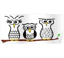 Three Little Owls Poster