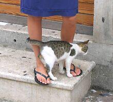 Croatian Kitty by Patricia127