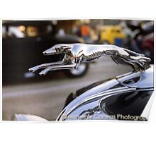 1934 Ford Roadster Greyhound Hood Ornament Poster