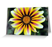 Touch of Color Greeting Card