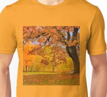Fall at Larz Anderson Unisex T-Shirt