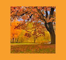 Fall at Larz Anderson T-Shirt
