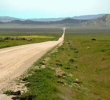 The Road to the Plain by kattand