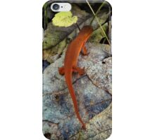 Woodland Critter iPhone Case/Skin