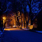 Winter Nights by pellinni