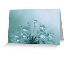 Peppermint Ice Greeting Card