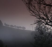 Weather Station - Howes Creek - Foggy Morning by Australis