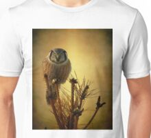 The great stare down Unisex T-Shirt