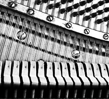 Piano Strings, Hammers & Pegs by Laurie Minor