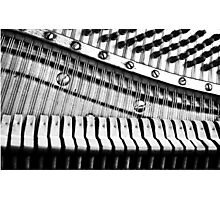 Piano Strings, Hammers & Pegs Photographic Print