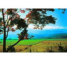 AUTUMN MORNING,CADES COVE Photographic Print