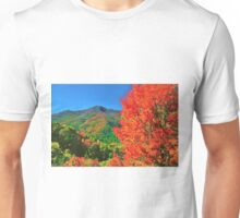 AUTUMN,BLUE RIDGE PARKWAY Unisex T-Shirt