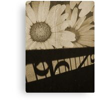The Shadow Flowers Canvas Print