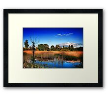 Out Of Africa II ... Framed Print