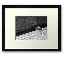Remembering Framed Print