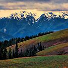 THE BAILEY RANGE by Chuck Wickham