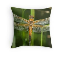 New Today Throw Pillow