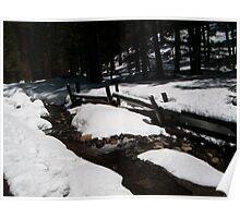 Yosemite Thaw Poster