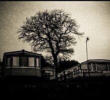 Starry night by seethroughdog