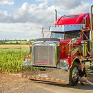 Freightliner and extras  by yampy