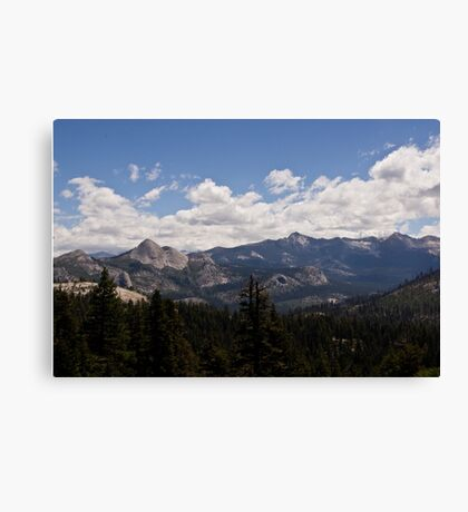 Along the Road to Glacier Point 2 Canvas Print