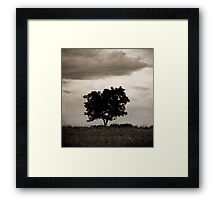 OnePhotoPerDay Series: 141 by L. Framed Print