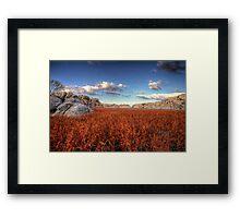 Red Wash Framed Print