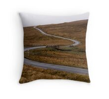 Langdon Common Throw Pillow