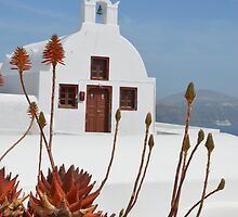 Santorini church by AHigginsPhoto