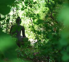 Sneaking up on Buddha by Alycia Messenger