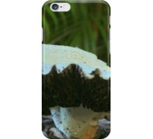 A Mushroom in Kakadu National Park iPhone Case/Skin
