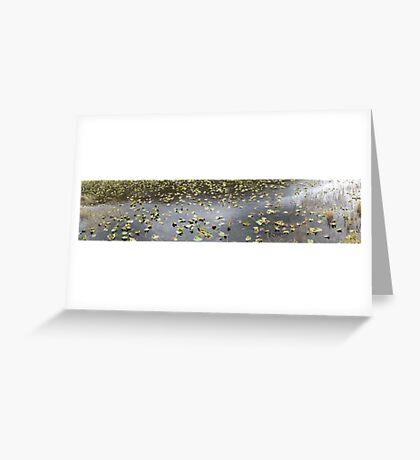 Cub Lake, Rocky Mountain National Park Greeting Card
