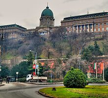 Buda Castle by zumi