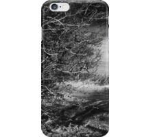 Hawthorne iPhone Case/Skin