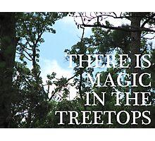 Magic Treetops (Sky and Brambles) Photographic Print