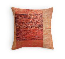 What exists beyond the frame Throw Pillow