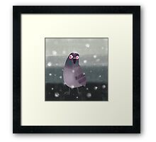 Angry Pigeon Framed Print