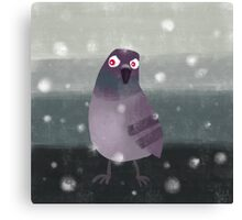Angry Pigeon Canvas Print