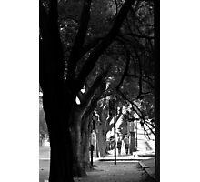 Footpath Photographic Print