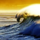 Dee Why Beach by David Smith